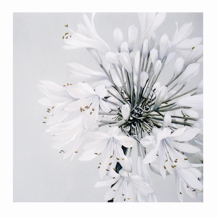 Salvrätik 33x33/20 White beauty