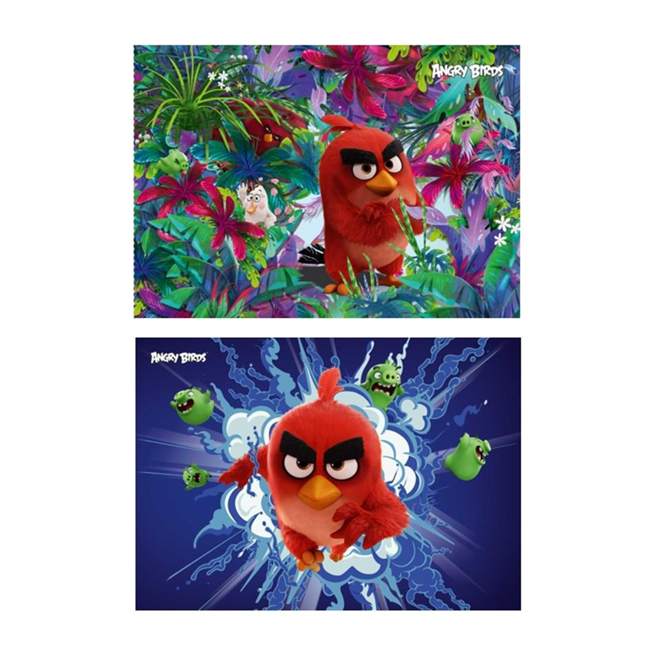 Joonistusplokk A4, 40 lehte 120g Angry Birds